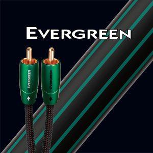 evergreen_primary