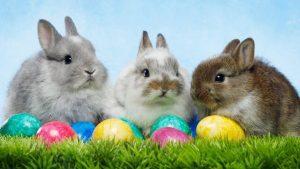 Easter Trading
